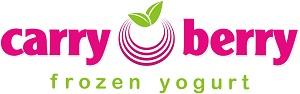 carry_berry_frozen_yogurt.jpg